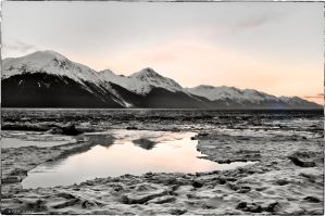 Ice Flow in Turnagain Arm by nivaun