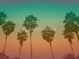 Sun City Palms by martinemes