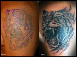tiger cover up by devilsarm