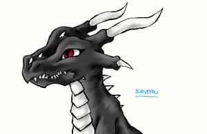 Request: Black Dragon by Eevora