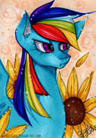 Flower Series: Rainbow Dash by MadBlackie