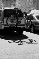 Bicycle Shadow by LDFranklin