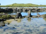 Rockpool 006 - HB593200 by hb593200