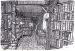bibliotheque inferieur by dracontologe