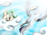 .:COM:. A Nice Day in the Sky by chaosphoniex