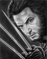 X-MEN- Wolverine-Hugh Jackman by vadim79vvl