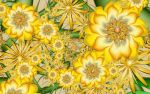 Sunny Yellow Orbit Flowers by wolfepaw