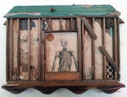 Assemblage: Framing by bugatha1