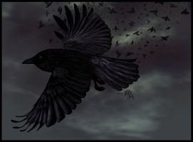 murder of crows by ManicMelvin