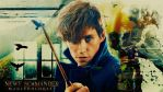 Newt Scamander wallpaper 03 by HappinessIsMusic