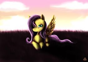 Fluttershy! by Taliesin-the-dragoon