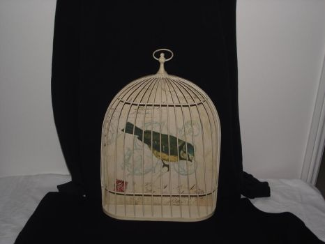 french bird cage stock 6 by erratic-stock