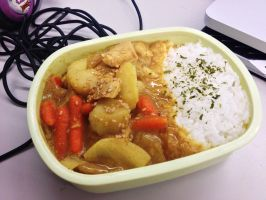 Curry Bento by Demi-Plum