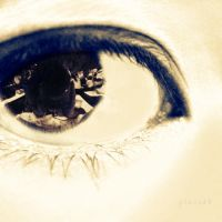 see ME in my EYE by placid9
