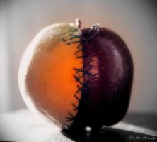 Apples + Oranges by MyLifeThroughTheLens