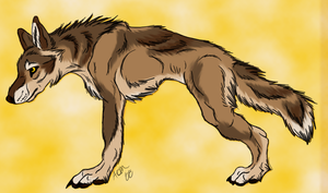 Werewolf Forms - Wolf by Eclipse-de-la-Luna