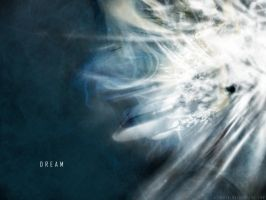 Dream by aziroth