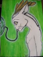 Concept - Android - Pet by Caroline-G-Buckby