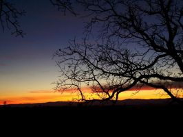 sunset at lookout by jayneallene