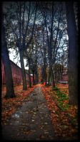 Alley by vdf