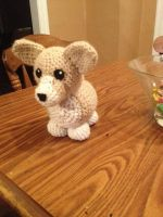 Crocheted Corgi Doll by alillama88
