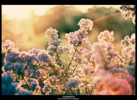Warmth by Duophonix