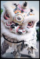 Lion Dance by NvLdai