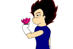 Vegeta with a butterfly^^ by VegetaLover12654