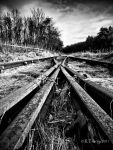 Wrong side of the tracks by fortezza