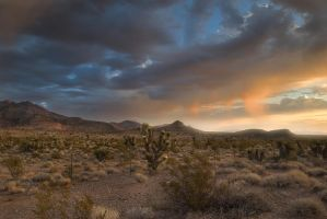 My Home on the Range by sciph
