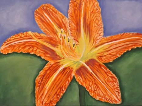 Daylily by Cassie Kinney, 2015 by sillybunnns