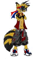 Art Trade Stripes The Raccoon by Vailwolf