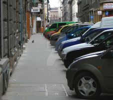 colored cars by donfoto