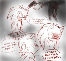 The Kill: Sonic and Shadow by winded-wolf