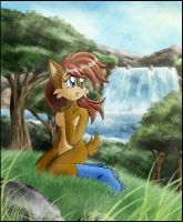 Sonic Satam: Peaceful View by zeiram0034