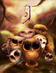 Putu owls by Anto-Z