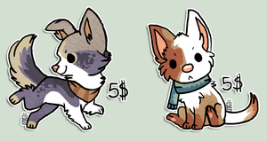 Puppies Sold by griffsnuff