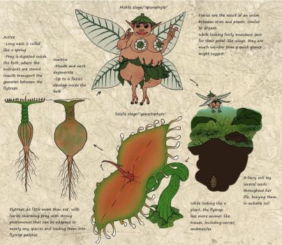 Speculative Overlord bullshit: Fairy lifecycle by Ramul