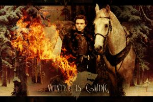 Robb Stark III by StereoCatastrophe
