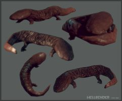 Hellbender low poly by Bawarner