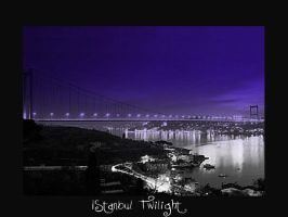 Istanbul Twilight by beggym