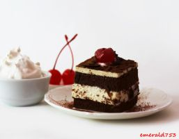 Vanilla Chocolate Mousse Cake by theresahelmer