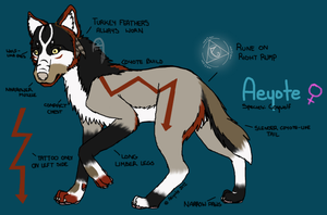 New Aeyote Reference Sheet by Aeyote
