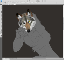firewolf113 color WIP by sugarpoultry