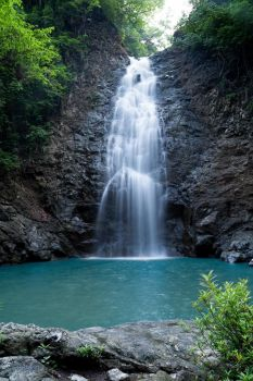 Waterfall Monteverde Costa Rica by Sara-Roth