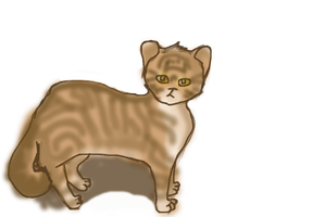 Leafpool by Spottedmoth321