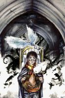 Harry Potter and the Philosopher's Stone by Kaos-Nest