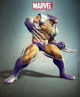 Wolverine pose by aamir-art