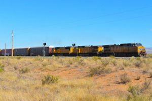 Union Pacific train by lawout16