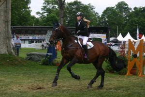 Show Jumping Stock 032 by LuDa-Stock